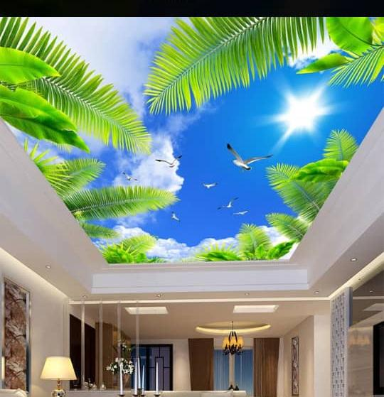 3d Graphic Ceiling Epoxy Floor Ghana 3d Floor Design